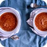 Pomidorowa z xinochondros
