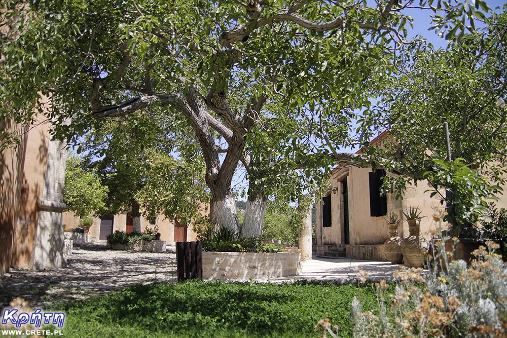 Klasztor Agios Georgios - dziedziniec