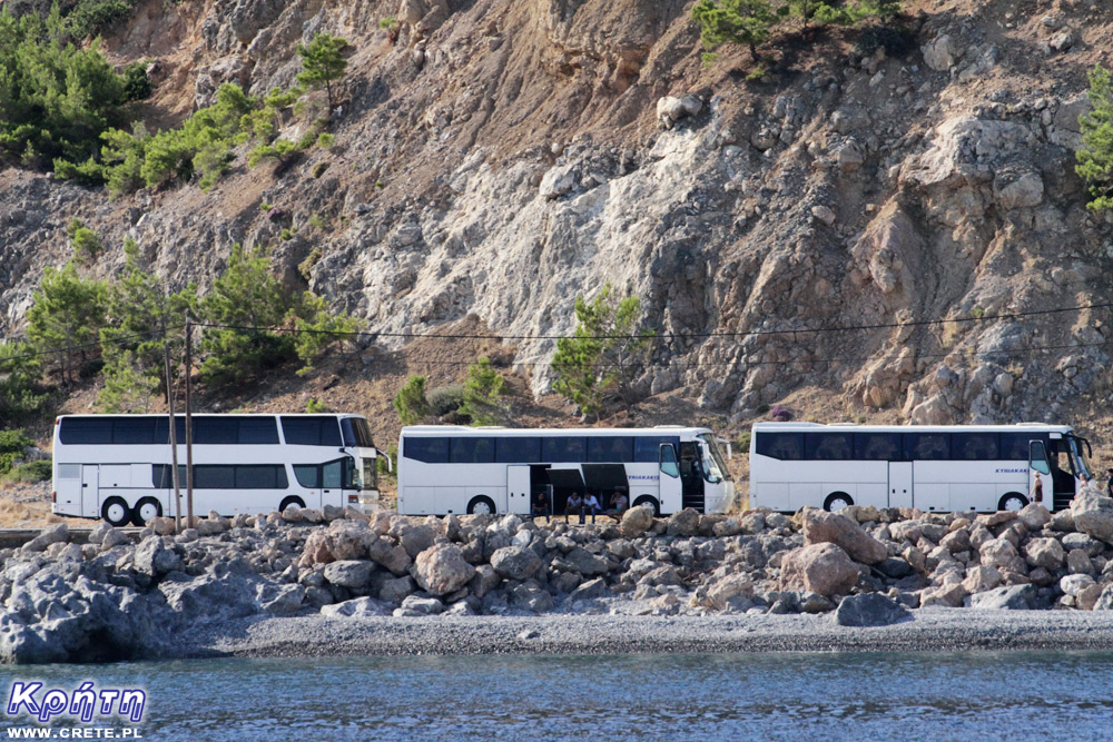 Sougia - buses waiting in the port area